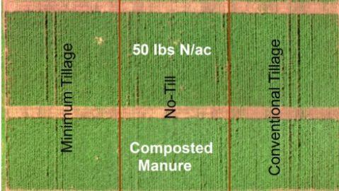 fertilizer treatments