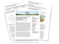 Snapshot of Synthesis of Biosolids Applications Report