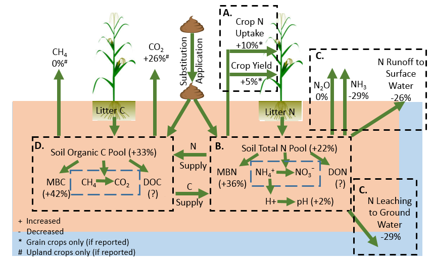 Effects of substituting manure for fertilizer. Estimates are averages from an analysis of 141 research trials. Abbreviations: nitrogen (N), carbon (C), microbial biomass N (MBN), microbial biomass C (MBC).