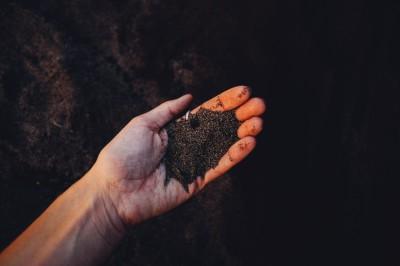 soil in a hand