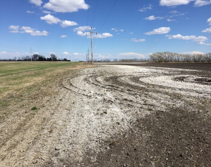 A saline-sodic headland along state Highway 5 East roadside ditch in Cavalier County, N.D.