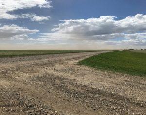Topsoil blowing away in Benson County