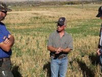 Farmers sharing research findings in a field