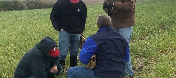 Farmers in a field looking at soil health results